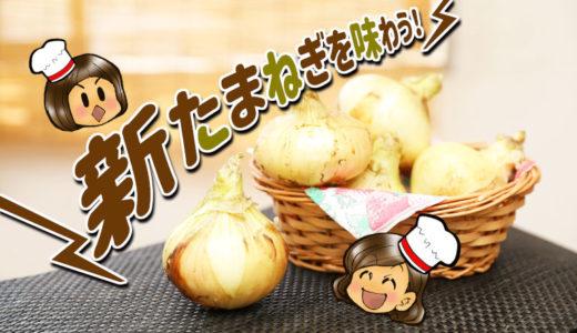 【簡単料理レシピ】見た目もそのまんま!新たまねぎがおいしく食べられる!今日の晩御飯に一品追加しちゃおう!