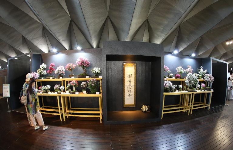 ばらフェスタ 禅と薔薇の一期一会