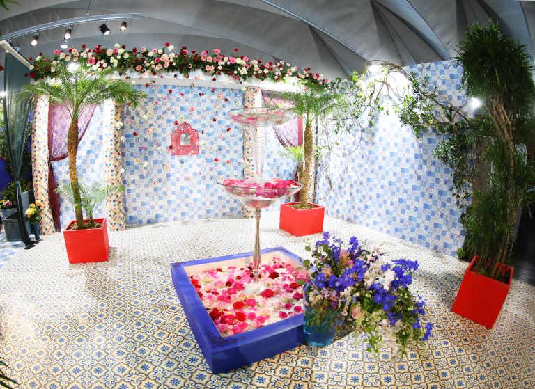 ばらフェスタ モロッコ魔法のバラ