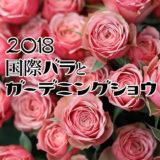 国際バラとガーデニングショウ 2018 レポート 国内最大規模のバラの祭典 その2